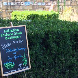 Unsere Initiative Essbare Stadt Böblingen lädt ein zur Kräuterführung mit allen Sinnen