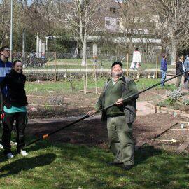 Fröhliche Menschen mit Werkzeug beim Baumschnittkurs im Interkulturellen Garten, sie schauen zu den Ästen des Baumes hoch