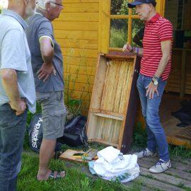 Einige Aktive der Essbaren Stadt planen das Einlogieren des Bienenschwarms in eine Bienenkiste