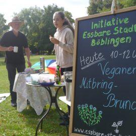 Gemütliches Zusammensein beim veganen treVpunkt: bei mirgebrachten Getränken und Speisen genießen wir den Samstag im Park in Böblingen